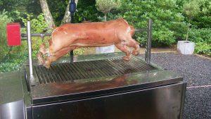 varken aan spit
